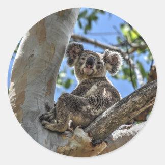 KOALA IN TREE AUSTRALIA ART EFFECTS ROUND STICKER