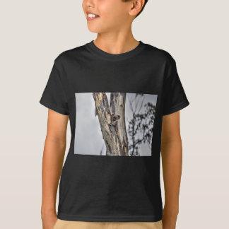 KOALA IN TREE AUSTRALIA ART EFFECTS T-Shirt