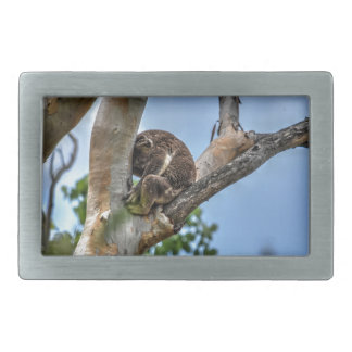 KOALA IN TREE AUSTRALIA WITH ART EFFECTS BELT BUCKLES
