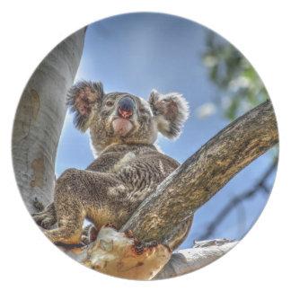 KOALA IN TREE AUSTRALIA WITH ART EFFECTS PLATE