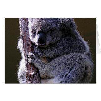 Koala in Tree Greeting Card