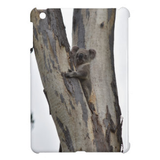 KOALA IN TREE QUEENSLAND AUSTRALIA COVER FOR THE iPad MINI