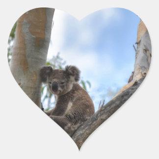 KOALA IN TREE QUEENSLAND AUSTRALIA HEART STICKER