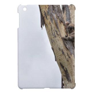KOALA IN TREE QUEENSLAND AUSTRALIA iPad MINI CASE