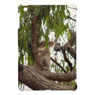KOALA IN TREE QUEENSLAND AUSTRALIA iPad MINI COVER