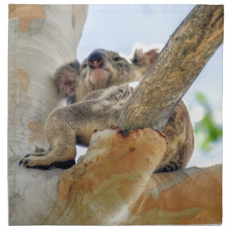 KOALA IN TREE QUEENSLAND AUSTRALIA NAPKIN