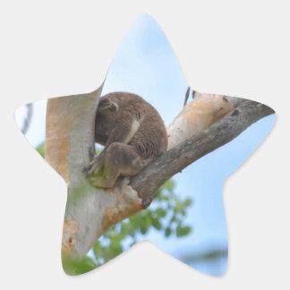 KOALA IN TREE QUEENSLAND AUSTRALIA STAR STICKER