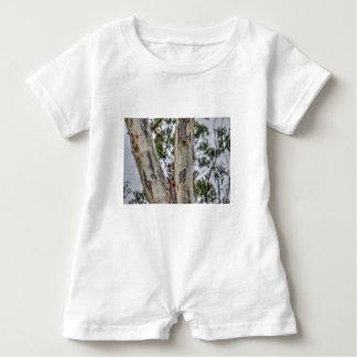 KOALA IN TREE RURAL QUEENSLAND AUSTRALIA BABY ROMPER