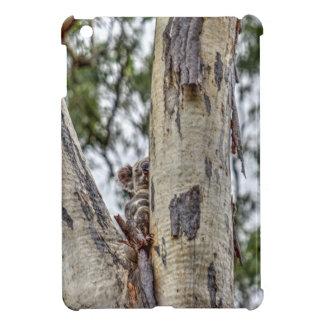 KOALA IN TREE RURAL QUEENSLAND AUSTRALIA CASE FOR THE iPad MINI