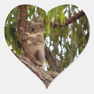KOALA IN TREE RURAL QUEENSLAND AUSTRALIA HEART STICKER