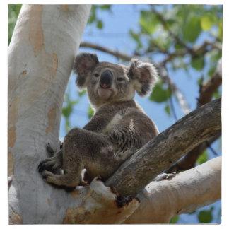 KOALA IN TREE RURAL QUEENSLAND AUSTRALIA NAPKINS