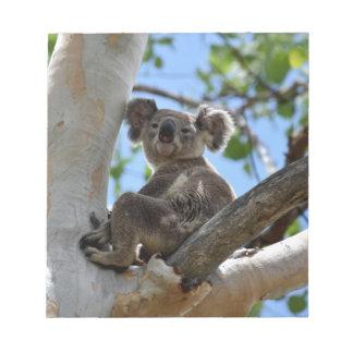 KOALA IN TREE RURAL QUEENSLAND AUSTRALIA NOTEPAD