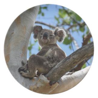 KOALA IN TREE RURAL QUEENSLAND AUSTRALIA PARTY PLATE