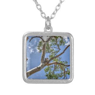 KOALA IN TREE RURAL QUEENSLAND AUSTRALIA SILVER PLATED NECKLACE