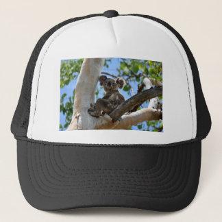 KOALA IN TREE RURAL QUEENSLAND AUSTRALIA TRUCKER HAT