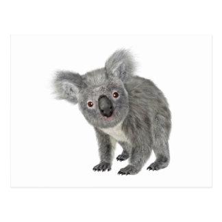 Koala Looking Quizzical Postcard
