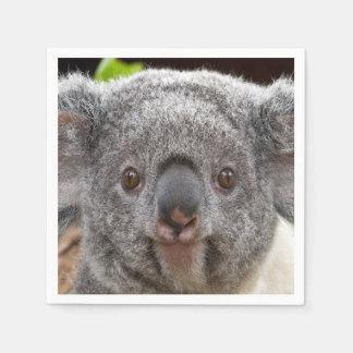 Koala Napkins
