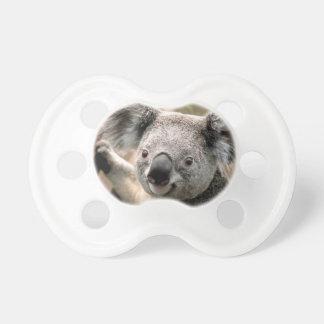 Koala pacifiers