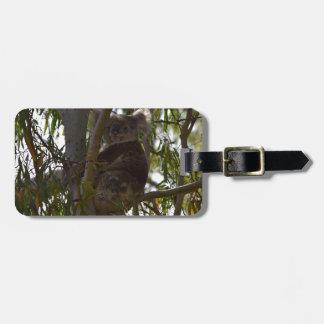 KOALA SITTING IN TREE IN THE WILD RURAL AUSTRALIA LUGGAGE TAG