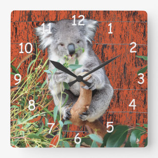 Koala Snack Time Square Wall Clock