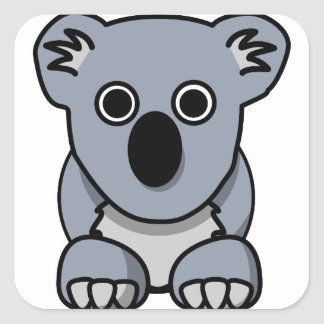koala square sticker