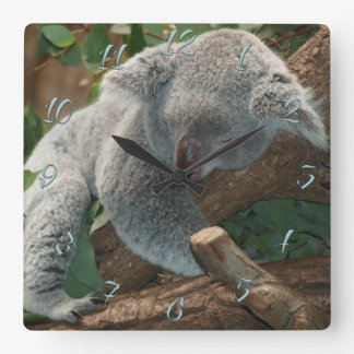 Koala Square Wall Clock