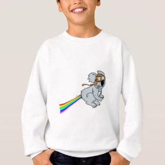 Koala with rainbow sweatshirt