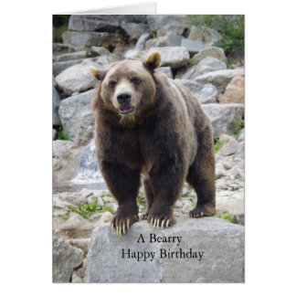 Kodiak Bear Photo Card