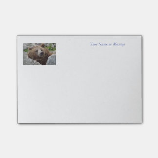 Kodiak Bear Post-it Notes