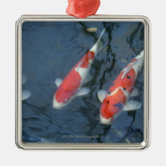 Koi carp in pond, high angle view metal ornament