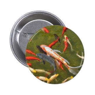 Koi carps in pond 2 inch round button
