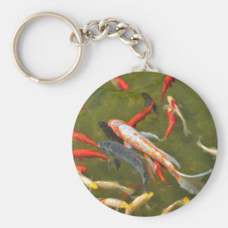 Koi carps in pond basic round button keychain
