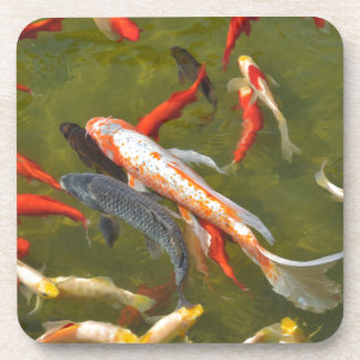 Koi carps in pond coaster
