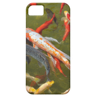 Koi carps in pond iPhone 5 covers