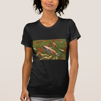 Koi carps in pond T-Shirt