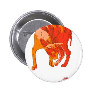 Koi Cat 2 Inch Round Button
