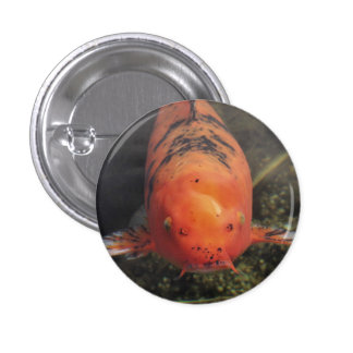 Koi Fish Orange Kissyface 1 Inch Round Button