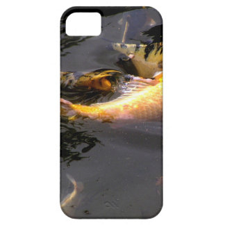 Koi pond in the garden iPhone 5 covers