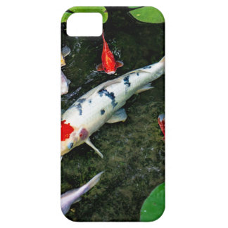 Koi Pond iPhone 5 Cover