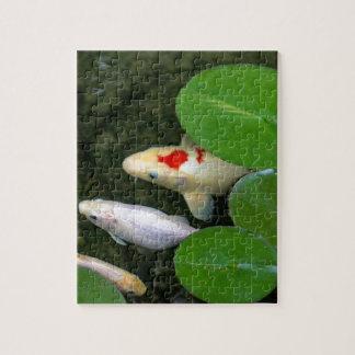 Koi Pond Puzzle