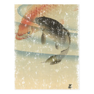 Koi Post Cards