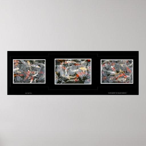 Koi Triptych Poster