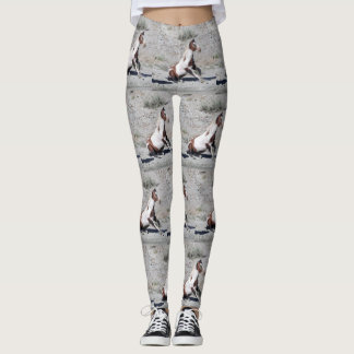 Kokomo Leggings