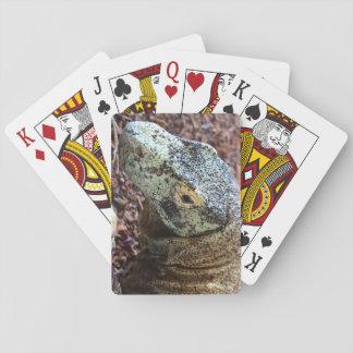 Komodo Dragon Cards