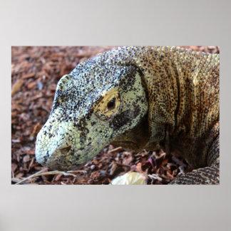 Komodo Dragon Up & Personal Poster