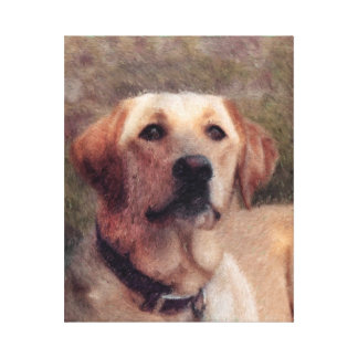 Kona the Yellow Lab Canvas Print