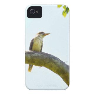 KOOKABUARRA QUEENSLAND AUSTRALIA iPhone 4 Case-Mate CASE