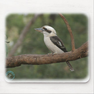 Kookaburra 9Y180D-182 Mouse Pad