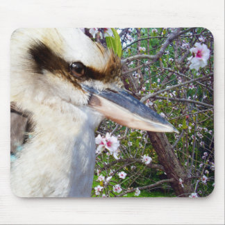Kookaburra Beside Blossom Tree, Mouse Pad