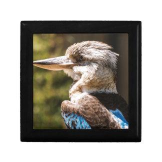 Kookaburra Gift Box